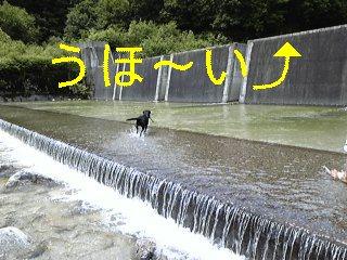 f0148927_192521.jpg