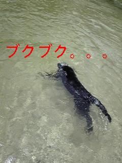f0148927_1981530.jpg