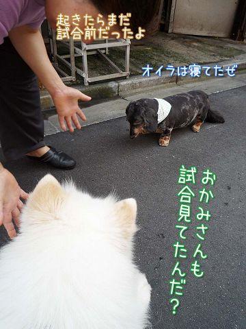 おめでとう日本!_c0062832_18121448.jpg