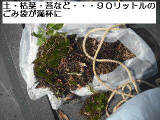 雨樋清掃_f0031037_20182246.jpg