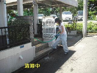 雨樋清掃_f0031037_2020120.jpg