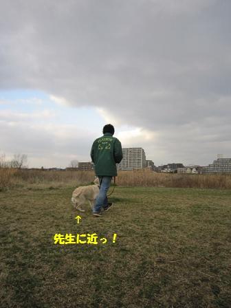 c0214455_13391689.jpg