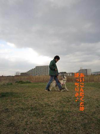 c0214455_13392840.jpg