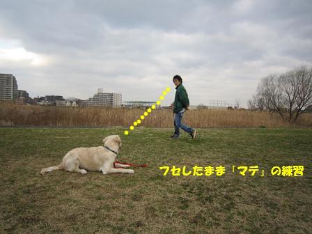 c0214455_13395559.jpg