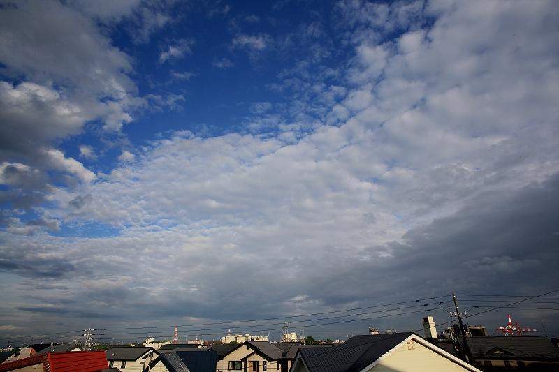 雨、あがる 空気がおいしい 5DM2_a0160581_6311096.jpg