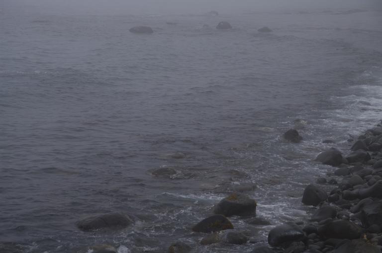 f0002701_200615.jpg