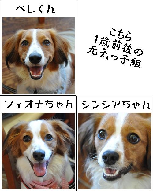 コイケルオフ☆_c0065512_19105963.jpg