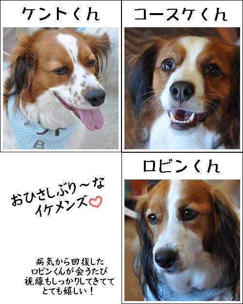コイケルオフ☆_c0065512_19113937.jpg