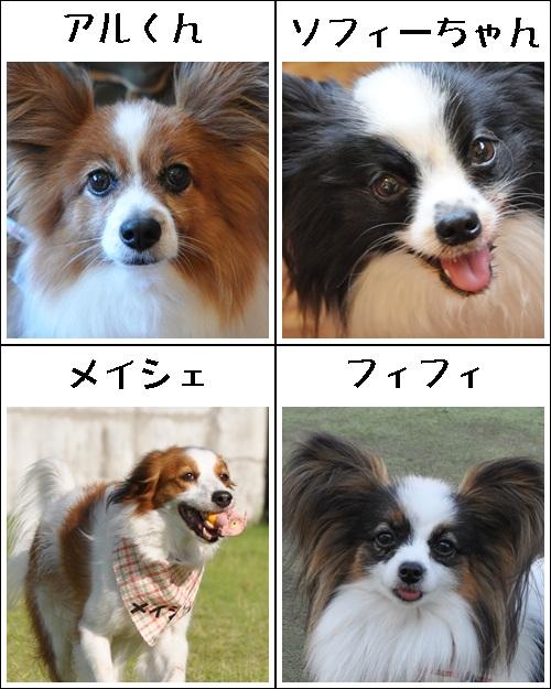 コイケルオフ☆_c0065512_19133141.jpg
