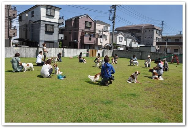コイケルオフ☆_c0065512_191941.jpg
