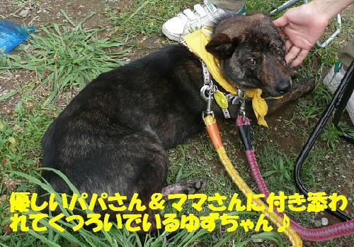 f0121712_1648519.jpg