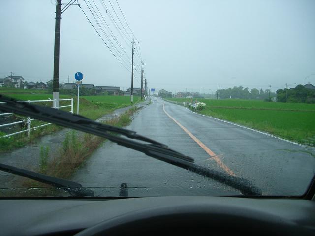 やっぱり梅雨には勝てない?ですやん!_f0056935_19225259.jpg