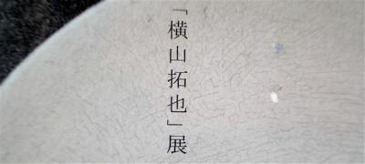 vol.782. 陶芸家・横山拓也個展@堺・Oogi、2010年6月26日(土)より_b0081338_3594225.jpg