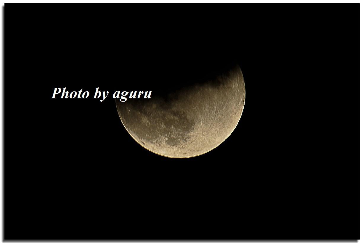 f0160241_2154868.jpg