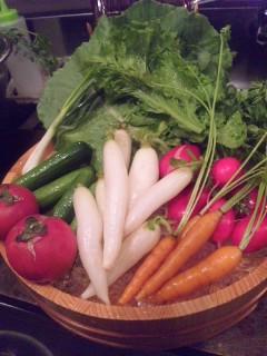 ミニ野菜_e0132147_17374064.jpg