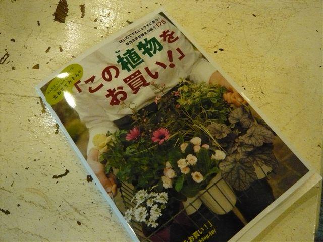 「この本をお買い!」・・・・「この植物をお買い!」_b0137969_16175418.jpg