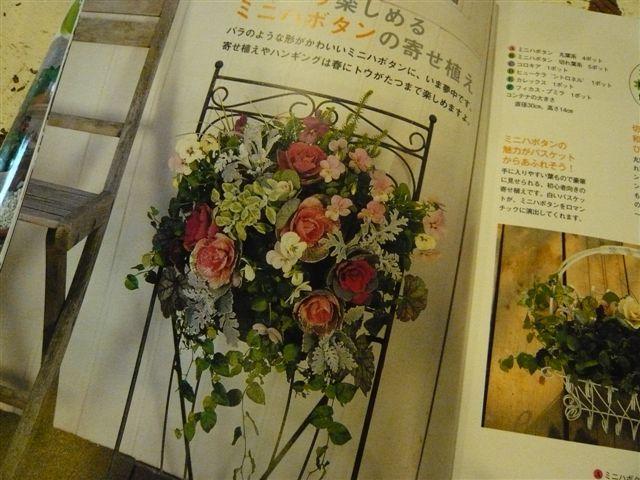 「この本をお買い!」・・・・「この植物をお買い!」_b0137969_16185279.jpg