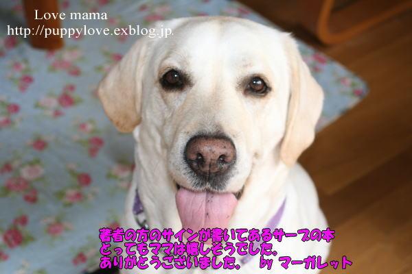 b0136683_13512427.jpg