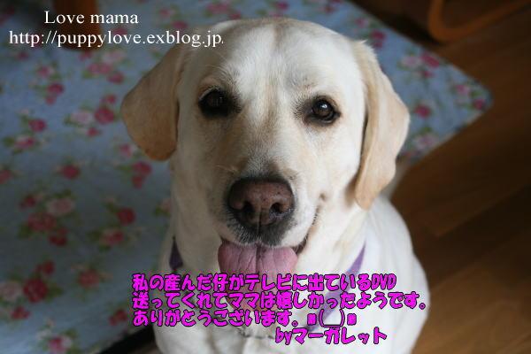 b0136683_1445175.jpg