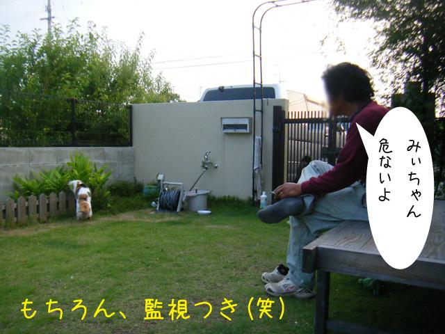f0008935_412312.jpg