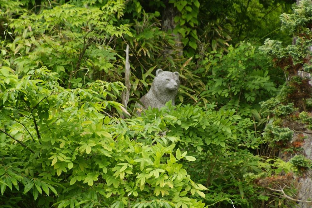 菖蒲と謎の親水公園_d0001843_22465732.jpg