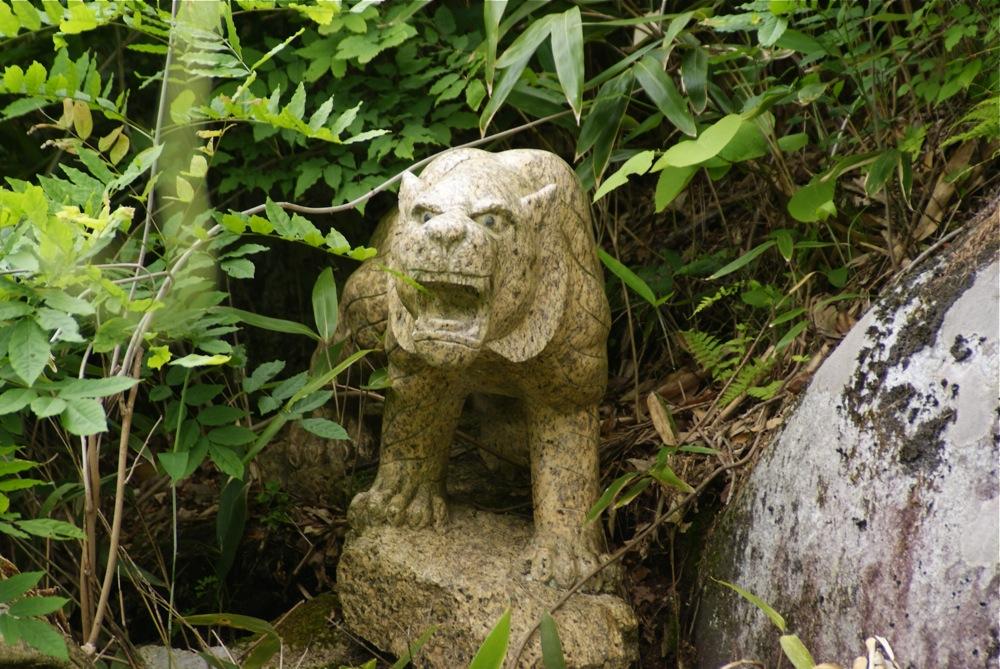 菖蒲と謎の親水公園_d0001843_22532247.jpg