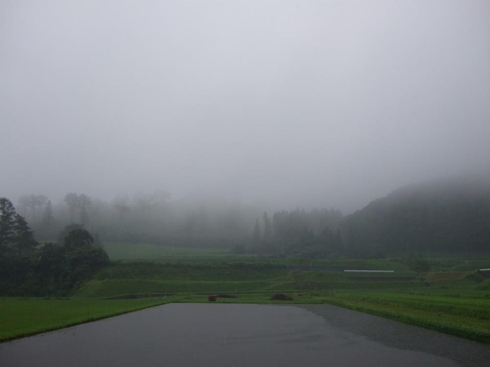 雨降りともあもあ景色_d0001843_2331468.jpg