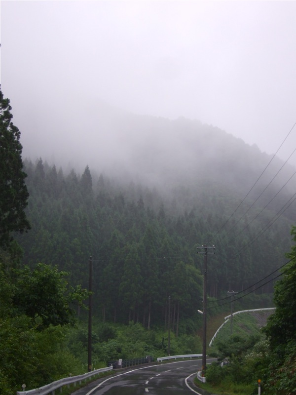 雨降りともあもあ景色_d0001843_23321082.jpg