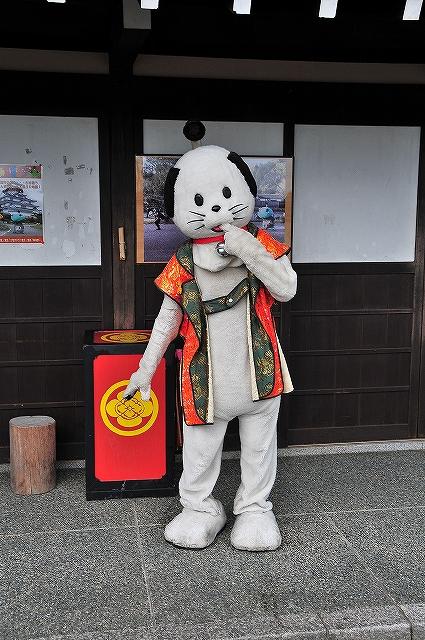 にゃんまげと近鉄団体列車と磐西_c0173762_19494916.jpg