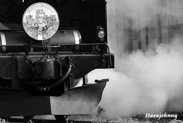 にゃんまげと近鉄団体列車と磐西_c0173762_19535122.jpg