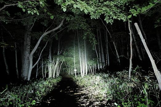 月明かりの六角牛山_f0075075_11161666.jpg