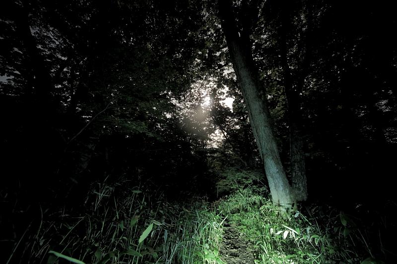 月明かりの六角牛山_f0075075_11174624.jpg