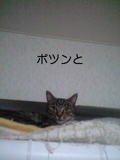 b0112380_1942485.jpg