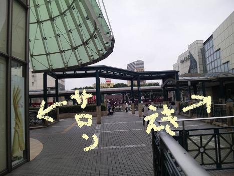 b0059410_1794553.jpg
