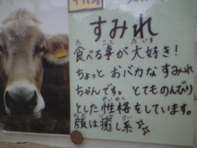 すみれ牛 【Chef\'s Report】_f0111415_2259966.jpg
