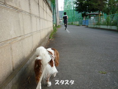 b0185323_2354759.jpg