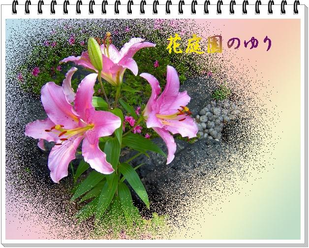 f0047824_1751176.jpg