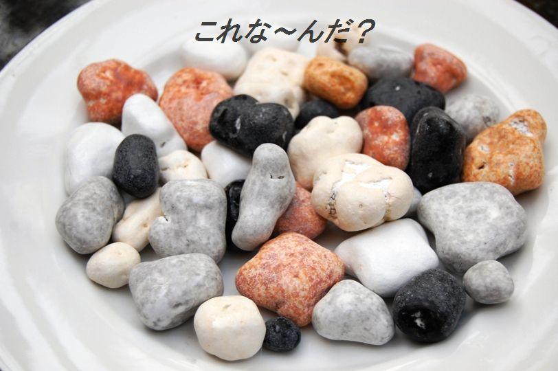 プチトマトのしそ生姜風味マリネ☆_d0104926_533175.jpg