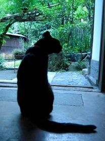 京都造形芸術大学通信教育部のスクーリングがありました_b0173241_96635.jpg