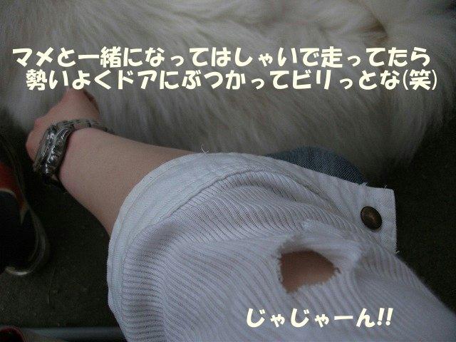 e0176159_12512880.jpg