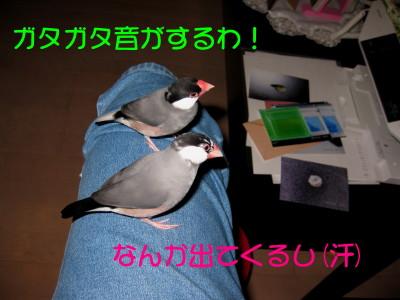b0158061_22424297.jpg