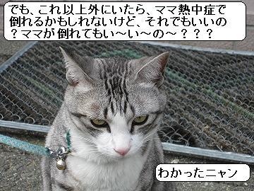 f0187781_16274192.jpg
