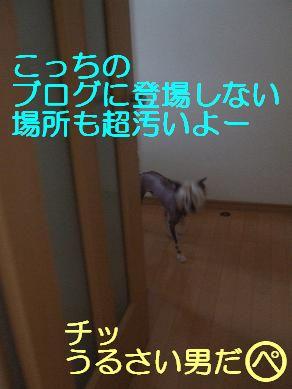 f0179203_714995.jpg