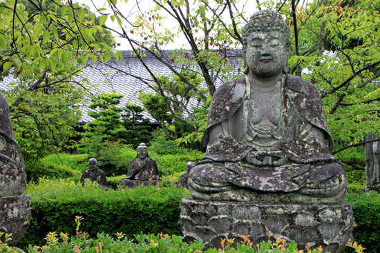 蓮華寺の石仏_e0048413_18175967.jpg