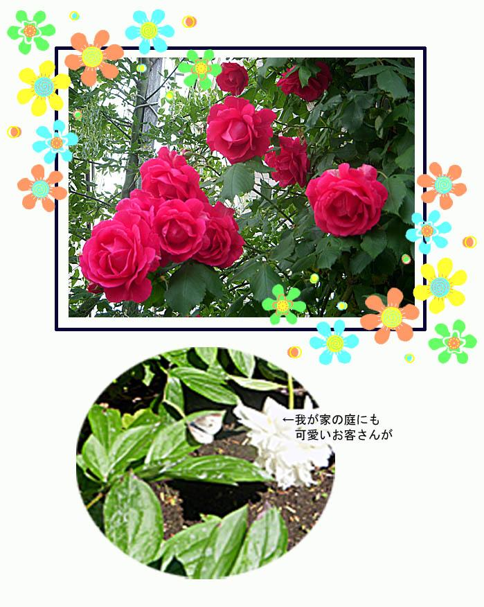 f0227323_1838491.jpg