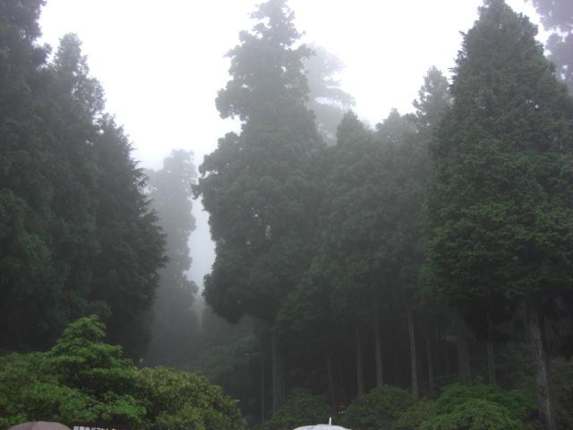 京都 北山_f0036534_9758100.jpg