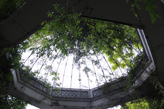 アカシアの樹の下で_e0046147_2164334.jpg