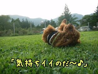 d0160960_18341281.jpg