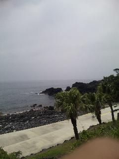 海洋公園_c0207861_1158396.jpg
