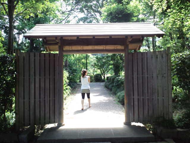 静岡の思い出の地巡り♪ 城北公園 Ⅱ_c0151965_18292667.jpg